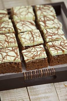Mint Chocolate Slices